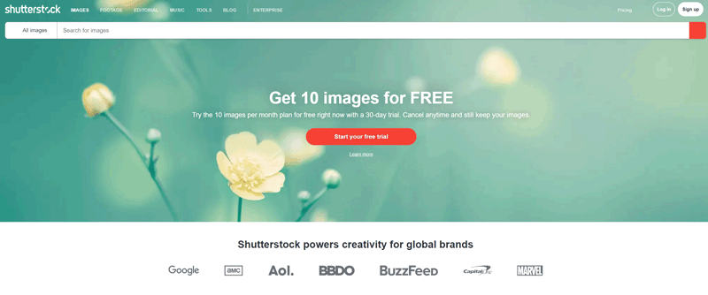 shutterestock