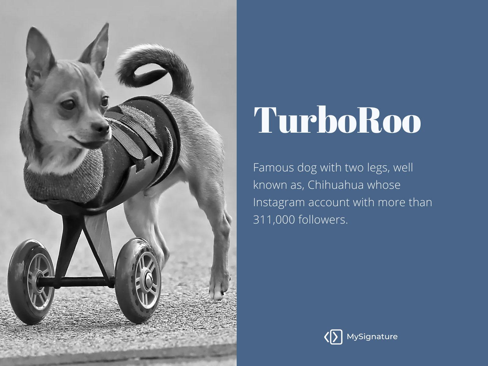 turboroo